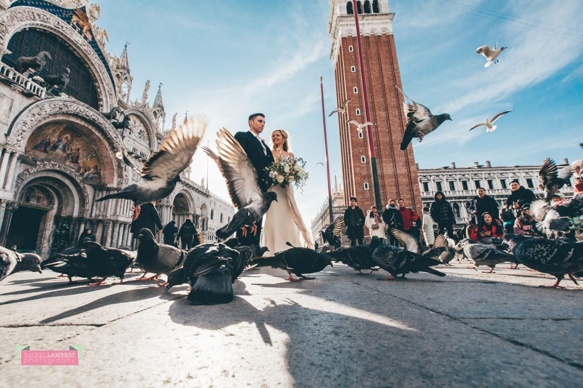 bride and groom pigeons campanile tower st marks square Venice italy
