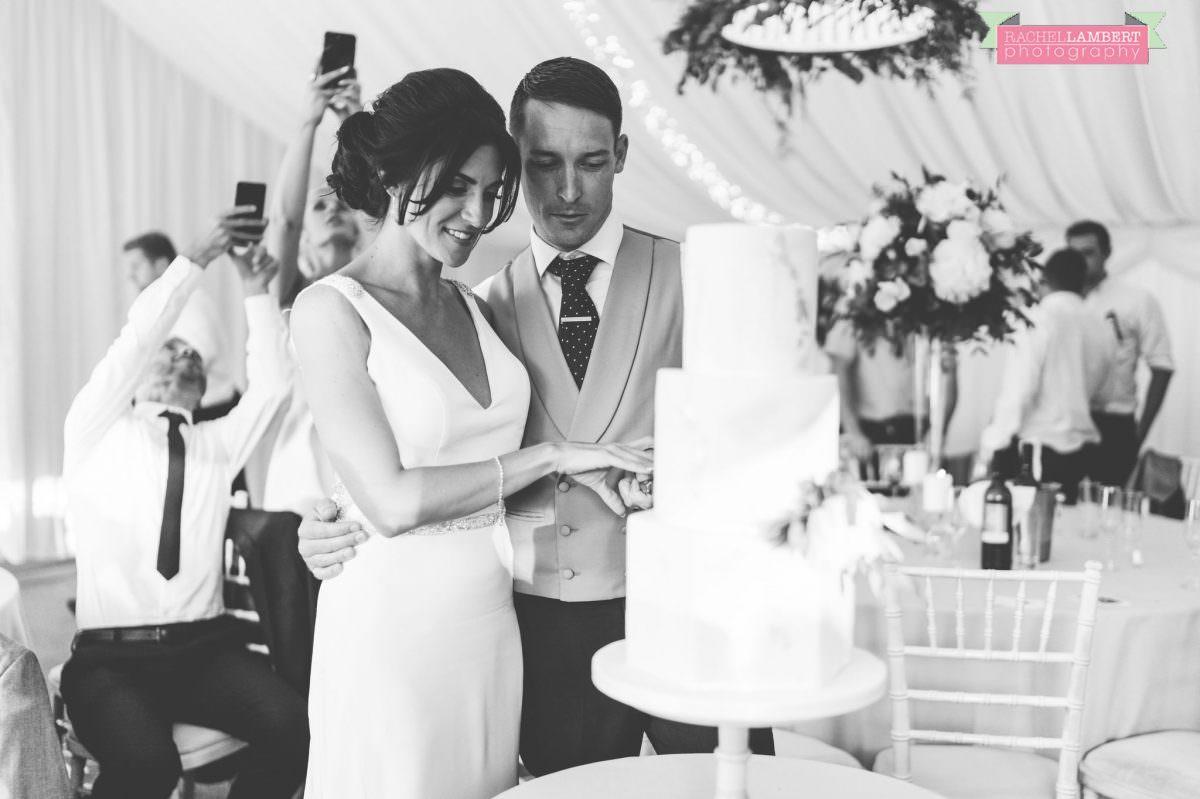 Rachel Lambert Photography llanerch vineyard wedding photographer bride and groom cutting the cake