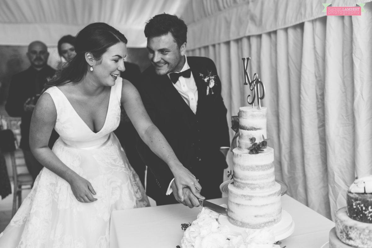 glanusk estate wedding rachel lambert photography cake cutting
